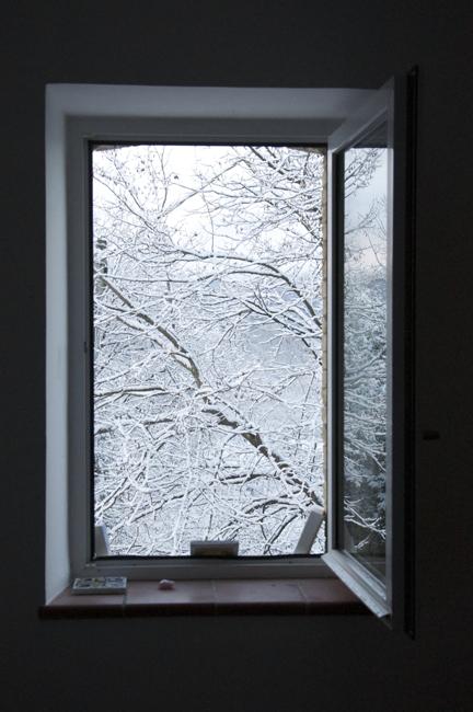 28) Window in Snow