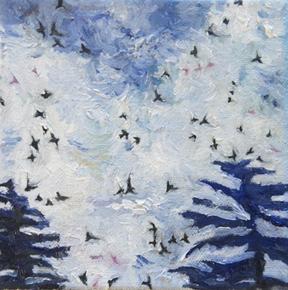 5) Little Birds