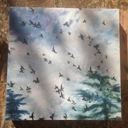 8)-Birds-and-Shadows